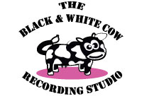 Black-&-White-cow-studio